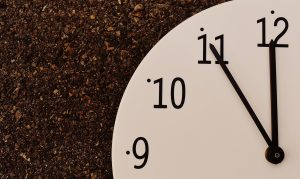 the-eleventh-hour-1738431_1920
